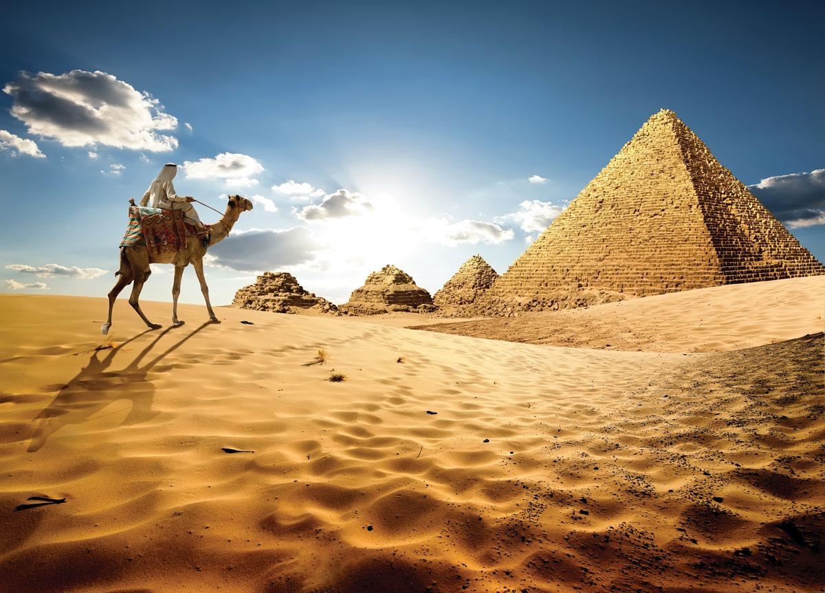 騎乘駱駝前往觀賞吉薩金字塔