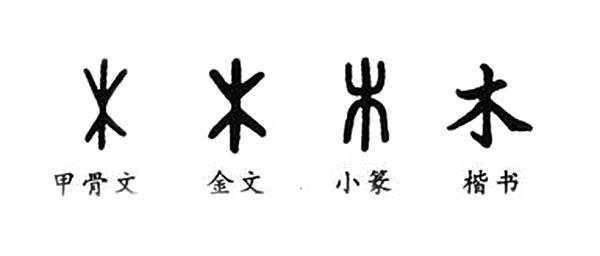 木字的歷史演變過程