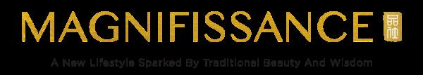 Magnifissance logo
