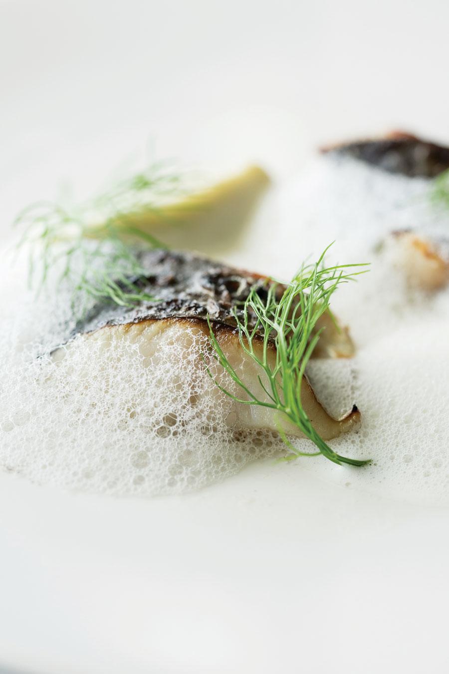 Chef-John-Vincent-Troiano